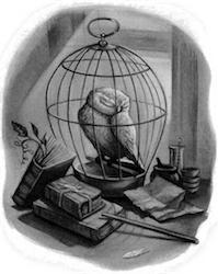 Beloved Hedwig.